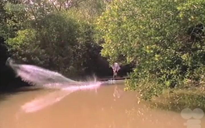 pantanos-de-centla