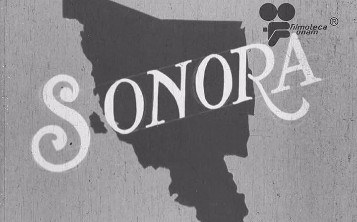 Sonora video